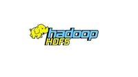 架构师入门必看系列,分布式文件系统HDFS解读