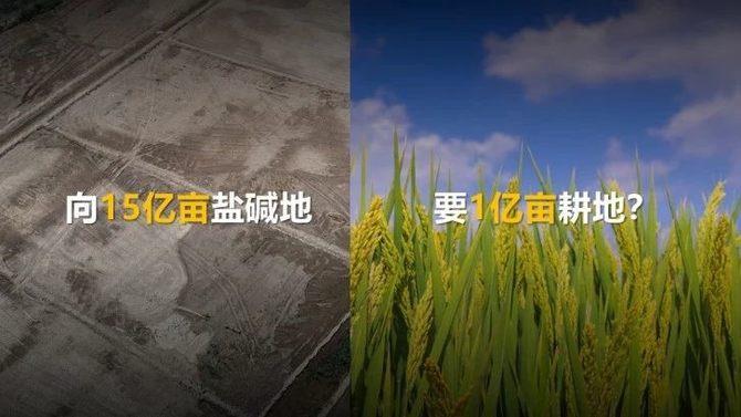 从农业沃土云平台看华为云掀起的智慧农业变革