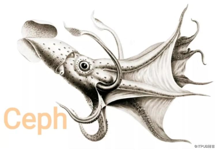 Ceph存储后端ObjectStore架构和技术演进