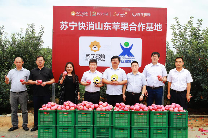 苏宁快消再次落子原产地直采 基地揭牌承包200万斤山东苹果