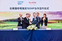 SAP攜手云南貓哆哩集團開啟全新數字化之路