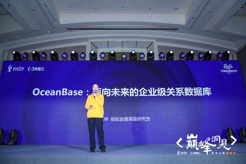 双11、TPC-C?OceanBase的征程在哪里?