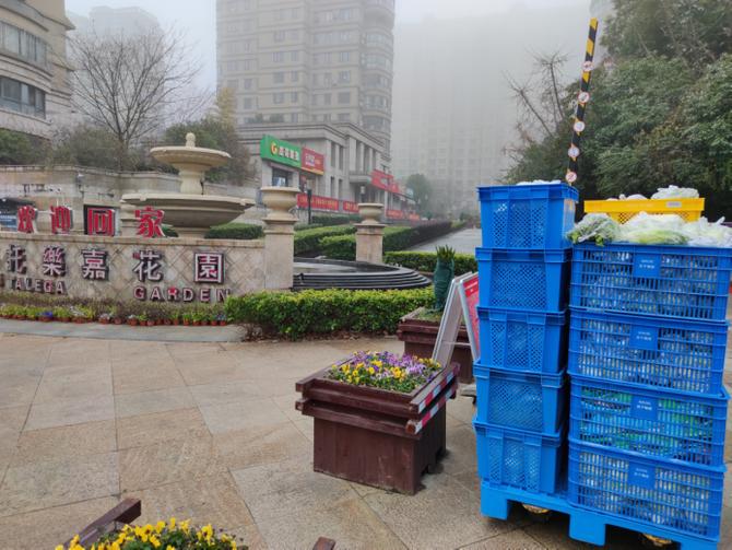 空城送菜人:日均运菜30吨,被需要感从未如此强烈