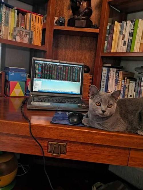 笔记本电脑掉过坑?买笔记本电脑一定要认识英特尔EVO认证平台-互联网专区