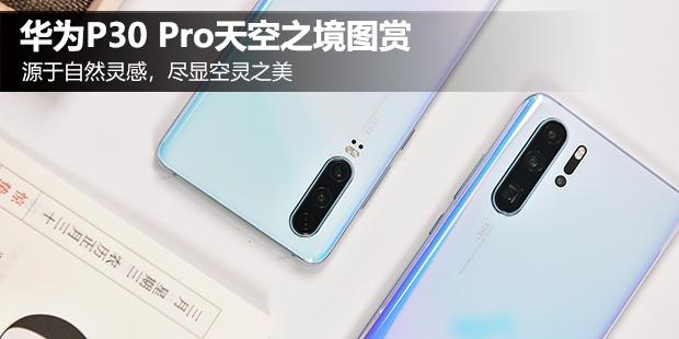 華為P30 Pro