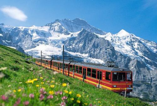 申根签证指南:1个智能小程序,畅游瑞士等欧洲40国更简单